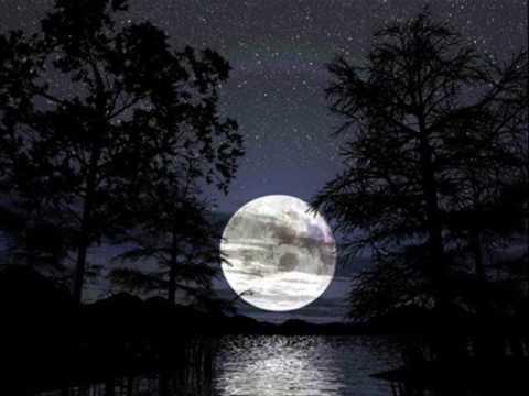 La notte la notte La notte la notte