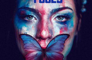 Shake Fools - Sara Colangeli fool Shake Fools SHAKE FOOLS 310x205
