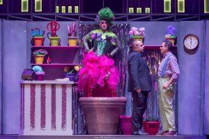 La piccola bottega degli orrori la piccola bottega degli orrori La piccola bottega degli orrori – il musical! A75 0749 300x200